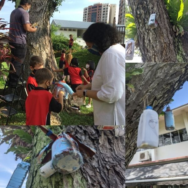 Outdoor Discovery Centre, bird feeders, Tanjong Katong, Canadian International School, international schools in Singapore, primary schools in Singapore, STEAM, unit of inquiry